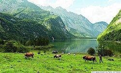 Berchtesgadener Land Königsee